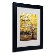 Trademark Philippe Sainte-Laudy Yellow Fall Art, White Matte With Black Frame, 11 x 14