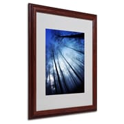 "Trademark Philippe Sainte-Laudy ""Blue Forest"" Art, White Matte With Wood Frame, 16"" x 20"""