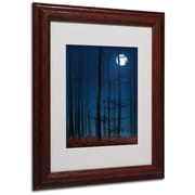 "Trademark Philippe Sainte-Laudy ""Blue Note"" Art, White Matte With Wood Frame, 11"" x 14"""