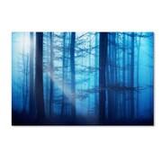 "Trademark Philippe Sainte-Laudy ""Light Box Blues"" Gallery-Wrapped Canvas Art, 12"" x 19"""