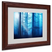 "Trademark Philippe Sainte-Laudy ""Light Box Blues"" Art, White Matte With Wood Frame, 11"" x 14"""