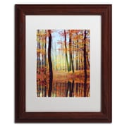 """Trademark Philippe Sainte-Laudy """"Fall Mirror"""" Art, White Matte With Wood Frame, 11"""" x 14"""""""