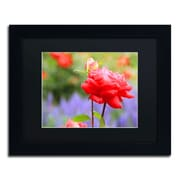 "Trademark Patty Tuggle ""In Bloom"" Art, Black Matte With Black Frame, 11"" x 14"""