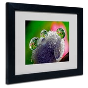 "Trademark Steve Wall ""Pixie Easter Eggs"" Art, White Matte W/Black Frame, 11"" x 14"""
