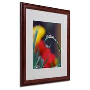 "Trademark Steve Wall ""Hidden in Water Drops 2"" Art, White Matte W/Wood Frame, 16"" x 20"""