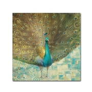 "Trademark Danhui Nai ""Teal Peacock on Gold"" Gallery-Wrapped Canvas Arts"