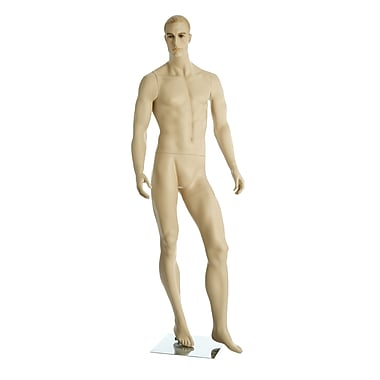 Can-Bramar Adult Male Mannequin