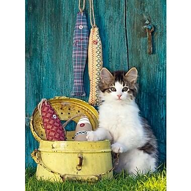 Clementoni The Cat, 500 Pieces