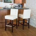 Christopher Knight Home Tate Tufted Leather Back Bar Stools (Set of 2); Ivory