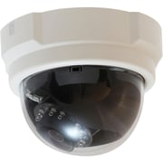 CP Technologies LevelOne FCS-3063 Network Camera With Day/Night, White