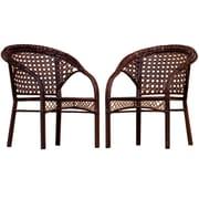 Home Loft Concept Robinson Wicker Club Chair (Set of 2)