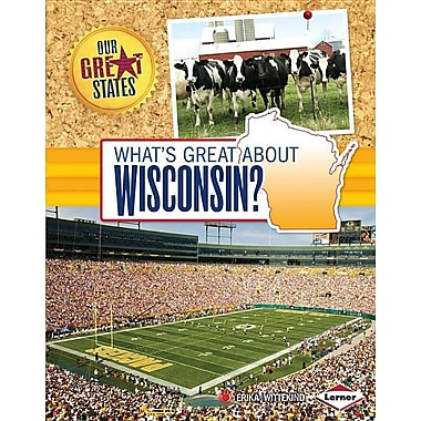 an analysis of great state of wisconsin Download the wisconsin facts & worksheets  in the midwest and great lakes regions see the fact file below for more information about the state of wisconsin.