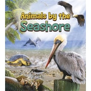 Animals by the Seashore (Animals All Day!)
