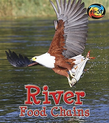 River Food Chains (Food Chains and Webs) 1468310