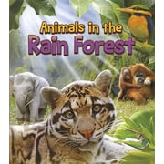 Animals in the Rain Forest (Animals All Day!)