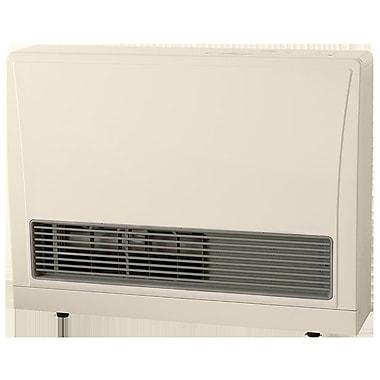 how to clean a rinnai gas heater