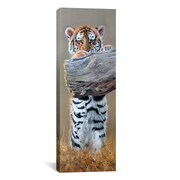 iCanvas ''Tiger Cub Standing up'' Panoramic Canvas Wall by Pip McGarry; 36'' H x 12'' W x 0.75'' D