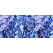 Bungalow Flooring Fo Flor Flowers Mat; 2'1'' x 5'