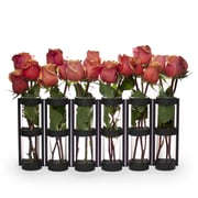 DanyaB Large 6 Tube Hinged Vase; Black