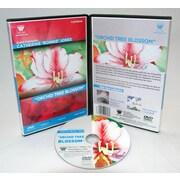Weber Art Catherine Bonnie Jones Watercolor Orchid Tree Blossom 1 Hour DVD