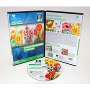 Weber Art Kathi Hanson Watercolor Creative Floral Design 1 Hour DVD