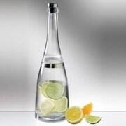 Prodyne Acrylic Fusion Bottle Cocktail Shaker Spirit