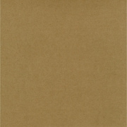 "Worldwin® 12"" x 12"" Kraft Cardstock, Brown, 25/Pack"