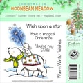 Crafter's Companion Moonbeam Meadow Holiday EZMount™ 4 3/4in. x 4 3/4in. Stamp Set, Magical Star