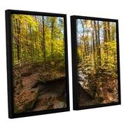 ArtWall Blue Hen Falls by Cody York 2 Piece Floater Framed Canvas Set; 24'' H x 36'' W x 2'' D