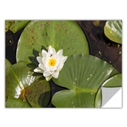 ArtWall Lily Pad by Cody York Art Appeelz Removable Wall Mural; 12'' H x 18'' W x 0.1'' D