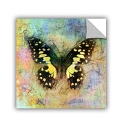 ArtWall Butterfly by Elena Ray Art Appeelz Removable Wall Mural; 18'' H x 18'' W x 0.1'' D