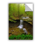 ArtWall Water Falls by David Kyle Art Appeelz Removable Wall Decal; 18'' H x 12'' W x 0.1'' D