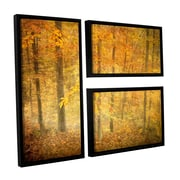 ArtWall Lost In Autumn by David Kyle 3 Piece Floater Framed Canvas Flag Set