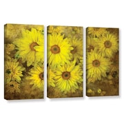 ArtWall Bright Sunflowers by David Kyle 3 Piece Gallery-Wrapped Canvas Set
