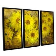 ArtWall Bright Sunflowers by Antonio Raggio 3 Piece Framed Graphic Art on Canvas Set