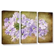 ArtWall Shades Of Violet by Antonio Raggio 3 Piece  Graphic Art on Wrapped Canvas Set