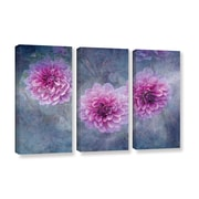 ArtWall Beauty in Purple by David Kyle 3 Piece Wrapped Canvas Art Set