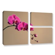 ArtWall Magenta Orchid by Elena Ray 3 Piece Photographic Print on Wrapped Canvas Set