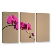 ArtWall Magenta Orchid by Elena Ray 3 Piece Photographic Print Wrapped Canvas Set