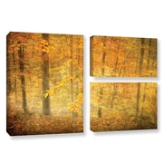 ArtWall Lost In Autumn by David Kyle 3 Piece Gallery-Wrapped Canvas Flag Set