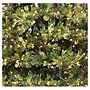 Vickerman Prelit Country Pine Wreath with Clear Lights;