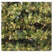 Vickerman Prelit Country Pine Wreath; 30''