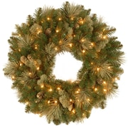 National Tree Co. Pre-Lit Carolina Pine Wreath; 30''