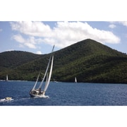 Art Master Sailing Tortola Gallery by Freddi Betts Photographic Print on Wrapped Canvas