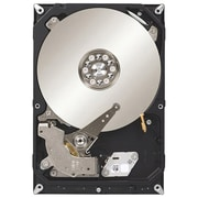Seagate® Ultra-Reliable NAS 3TB Internal Hard Drive (ST3000VN000)