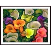 Printfinders 'Colorful Calla Lilies' by Debra Bucci Painting Print Art