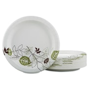 Dixie Pathways Mediumweight Paper Plate (Pack of 300)