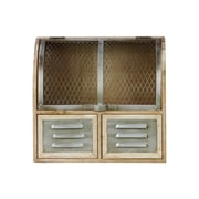 Urban Trends Wood Cabinet