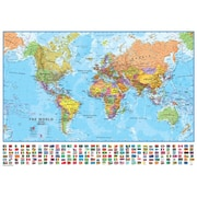 Waypoint Geographic World Laminated Wall Map