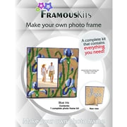 "FramousKits Blue Iris Plastic Canvas Kit, 7.5"" x 7.5"", 10 Count"